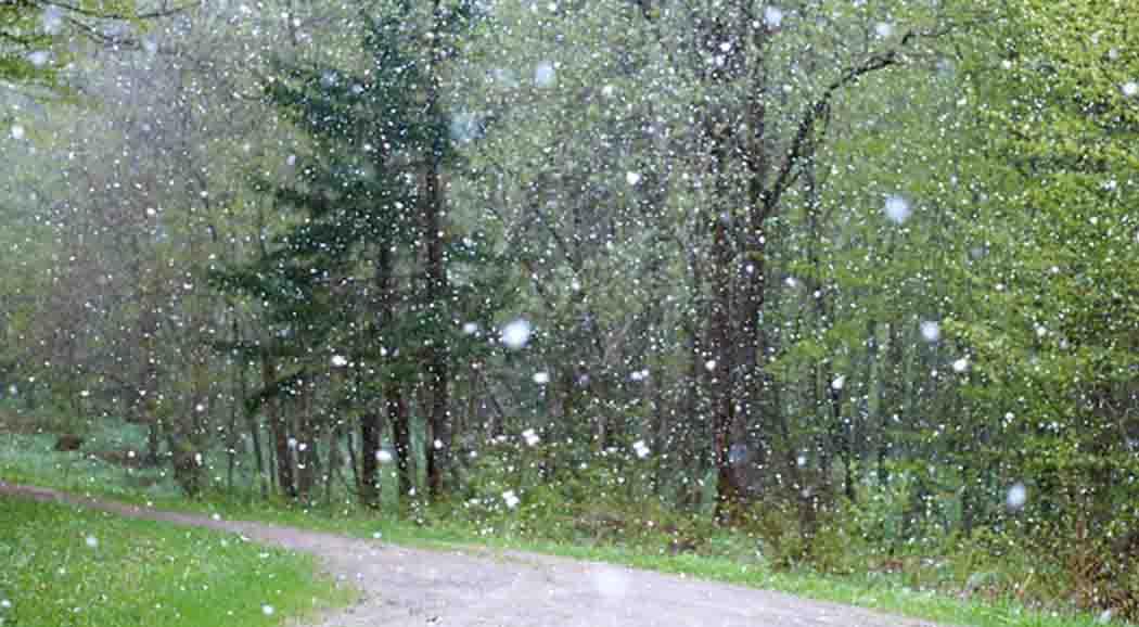 Мокрый снег идожди ожидают екатеринбуржцев вчетверг ипятницу— Полная безнадёга